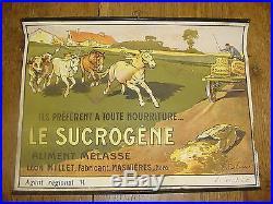 AFFICHE PUBLICITAIRE LE SUCROGENE CHEVAUX MASNIERES 1900